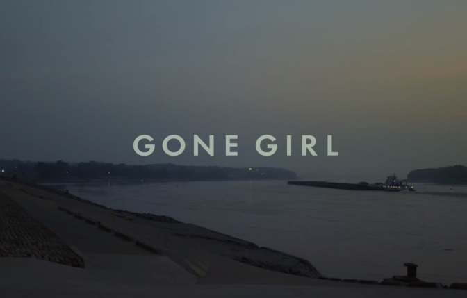 Book Review : Gone Girl by Gillian Flynn